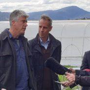 Prominent Tasmanians warn of threat to GMO moratorium